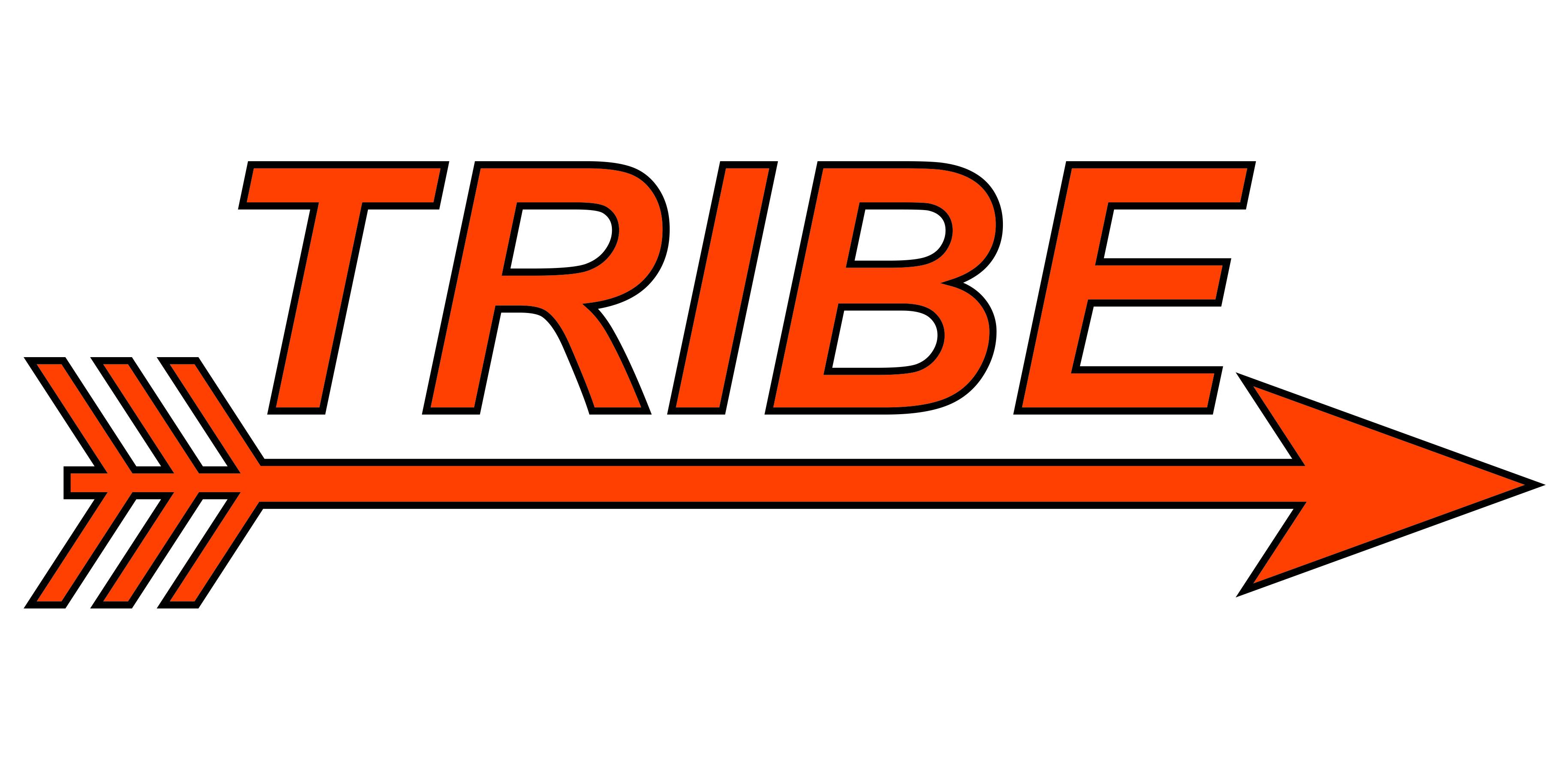 Tribe Logo for Local Baseball Team